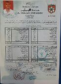 الخرطوم. السودان. محاسب