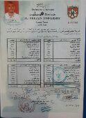 السودان. محاسب ذو خبرة