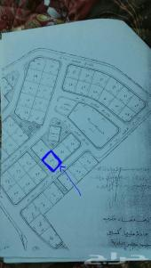ارض للبيع مساحتها 625م2 في السودة قرية العزيز