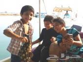 رحلات بحرية (صيد نزهة غوص) للعوائل والشباب