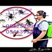 شركه رش مبيد جميع انواع الحشرات رقم واحد جده