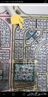 لبيع ارض بحي الكوثر 1220 م شرقيه بسعر 380 الف