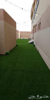 ثيل عشب صناعي درجة أولى الجبيل