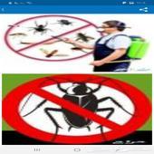 رش حشرات بينبع صراصير وبق الفراش اقل لاسعار