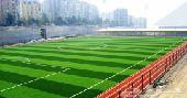 الشركة العالمية للعشب الصناعي