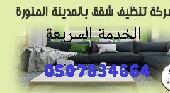 تنظيف شقق وخزانات ورش حشرات بالمدينة المنورة
