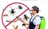 مؤسسة مكافحة حشرات والتنظيف بالمدينة المنورة