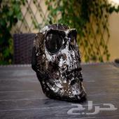 اقنعة دبابات جمجمة Skull mask