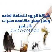 شركة رش مبيد حشرات تنظيف منازل فلل كنب سجاد