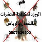 مكافحة حشرات بالرياض تنظيف كنب فرشات خزانات
