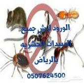 رش مبيدات حشرات بالرياض تنظيف مجالس موكيت