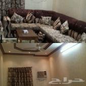 شقة عوائل حى الشفا ممتازة مع عفش