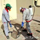 شركة مكافحة حشرات وتنظيف منازل فلل شقق فرشات