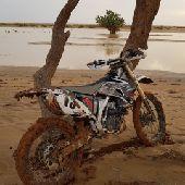 دباب صحراوي ياماها 250