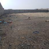 قطع اراضي مساحاتها كبيره في جفن اقل قطعه 1200