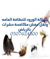 شركة رش مبيد حشرات بالرياض تنظيف منازل كنب
