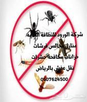 رش مبيدات حشرات غسيل منازل كنب موكيت فرشات