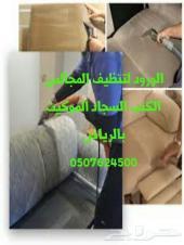 شركة رش مبيد حشرات تنظيف منازل كنب مساجد سجاد