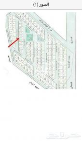 ارض للبيع  مخطط الأركان حائل 322متر