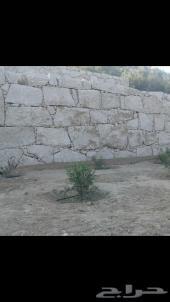 مباني حجر ربراب بلبكلين بليد ممرات