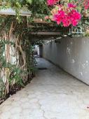 دور للايجار في حي المحمدية في جده