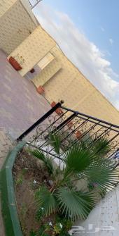 استراحة للعيد بملعب صابوني 1500 ريال