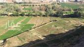 مزرعة للبيع في حي جبرة في الطايف