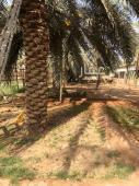 استراحة للبيع في حي مخطط الرواف في بريدة