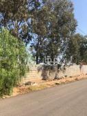 ارض للبيع في حي الحوية في الطايف