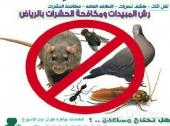 شركة مكافحه الحشرات ورش مبيد الصراصير والنمل