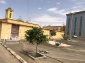 عماره للايجار في حي مخطط الصهبان في نجران