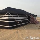 بيع بيوت شعر خيام محالس عربية مخيمات