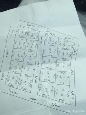 ارض على شارعين مساحةة 914 بالمدينه المنوره سوم 60 الف