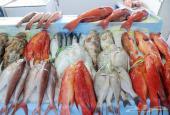أقدم لكم توصيل طلبات الأسماك و المأكولات البحرية يوميا من سوق السمك المركزي في جدة ( البنقلة )