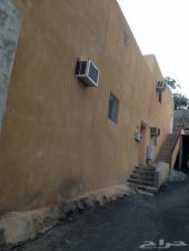 بيت شعبي مع قطعتين أرض للبيع في العمرة