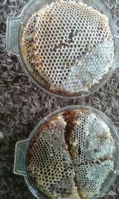 المندوب نازل جده عسل الشمع السمر للباطنيه على الضمان من الباحه عروض وهديا  شمع ربيعي مخفض السعر