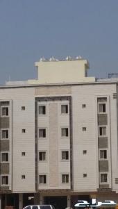 شقة فاخرة وواسعة للبيع بحي المنار 190م