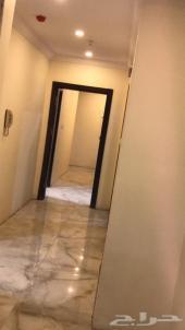للايجار شقة جديدة بالشوقية - الممشى