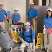 شركة تنظيف ومكافحة الحشرات والنمل الابيض معا