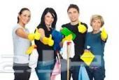 شركة نظافة منازل ومكافحة حشرات 0548946144