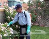 افضل شركه رش مبيدات ومكافحه حشرات بالمملكة