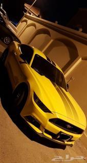 موستنج GT سعودي ممشى قليل