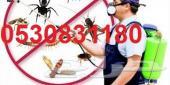 شركة مكافحة النمل الابيض بالدمام0530831180