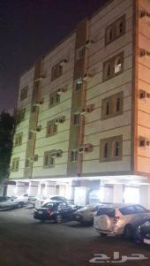 عمارة في البوادي مساحة 525م ( دخله 12)