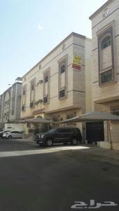 عماره خلف شقق روزه القصر في البوادي