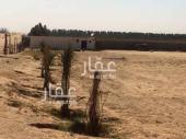 مزرعة للبيع في حي البلد القديم في البكيرية
