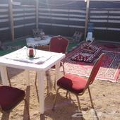 مخيم للإيجار بالمدينه