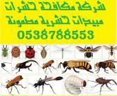 شركة مكافحة حشرات ورش مبيدات 0538788553
