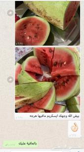 حبحب ساجر وملوكي مدور