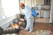 شركة رش مبيدات مكافحة حشرات بق صراصير